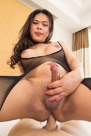 Big Ladyboy O Phat Ass Big Asshole Barebacking